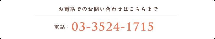 お電話でのお問い合わせはこちらまで 電話:03-3524-1715